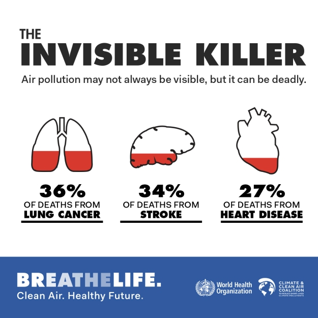 breathelife-infographic1-hr