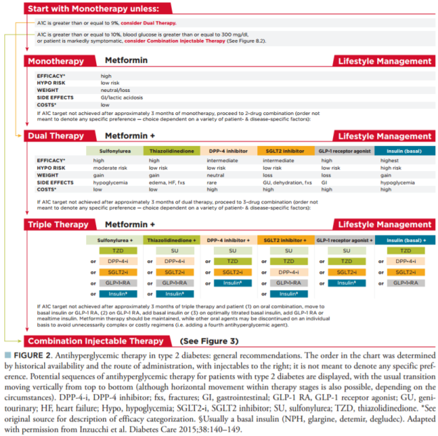 figure-2-antihyperglycemic-therapy-in-type-2-diabetes-general-recommendations