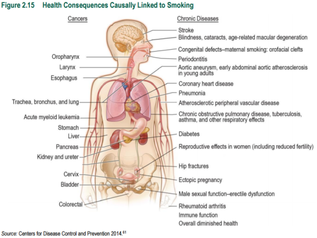 figure-2-15-health-consequences-causally-linked-to-smoking