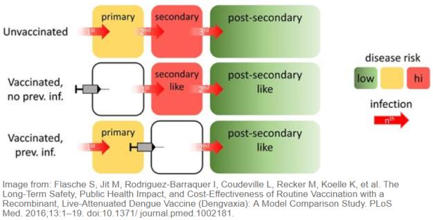 Long term findings of dengvaxia efficacy