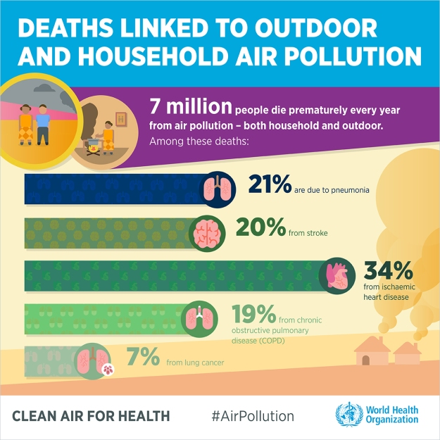 air-pollution-infographics-english-2-1200px