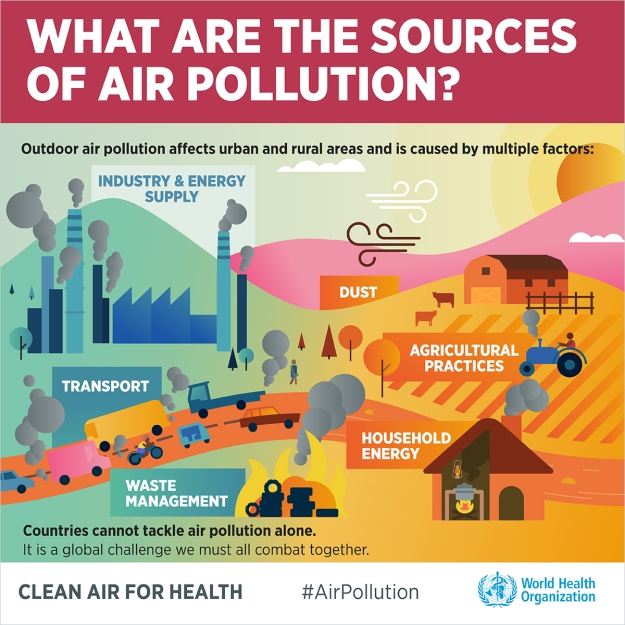 air-pollution-infographics-english-4-1200px