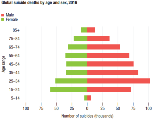 Suicide deaths 2016 WHS2018