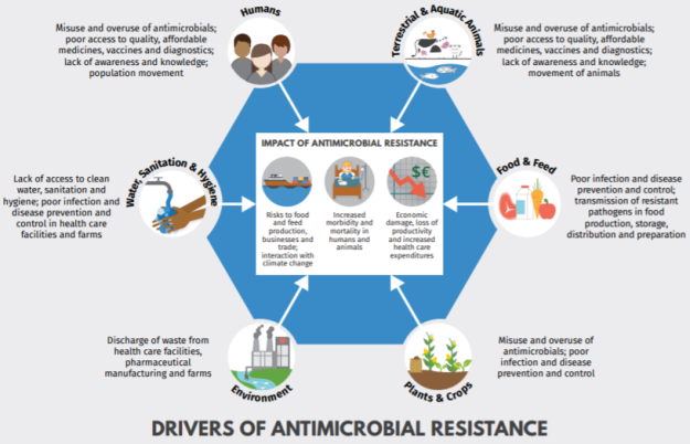 2019-05-01 12_45_34-IACG_final_Drivers of Antimicrobial resistance