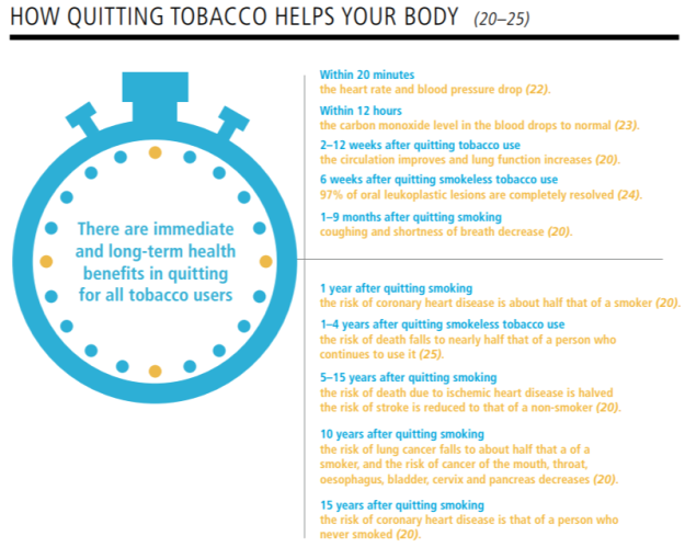 WHO Report on the Global Tobacco Epidemic 2019 How quitting helps your body