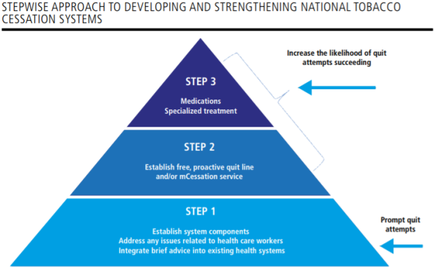 WHO Report on the Global Tobacco Epidemic 2019 Stepwise approach to developing cessation systems