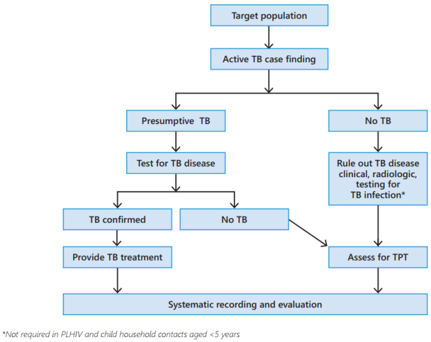 Cascade of TB case finding and preventive treatment